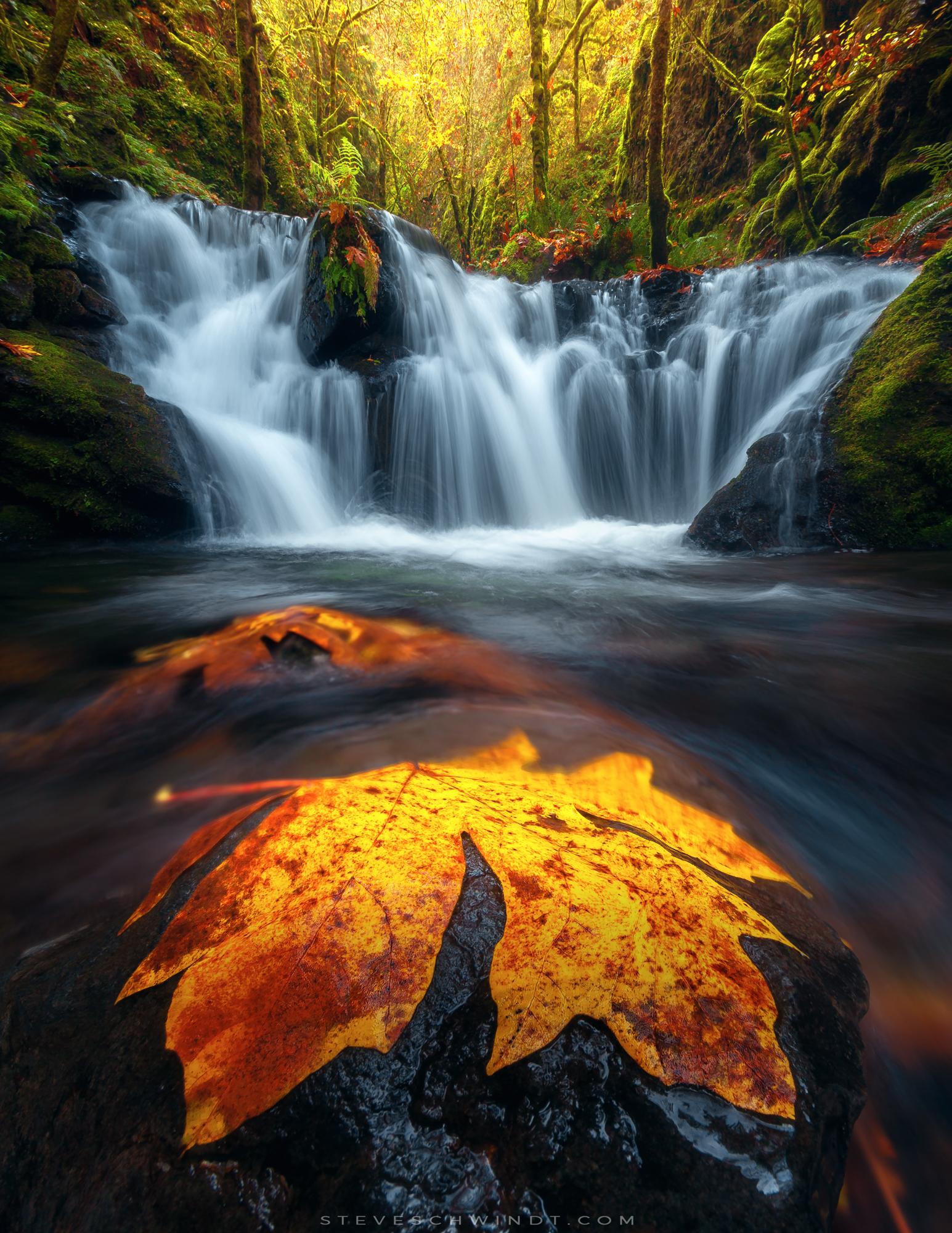 Emerald Falls, Oregon (Fall, 2016)