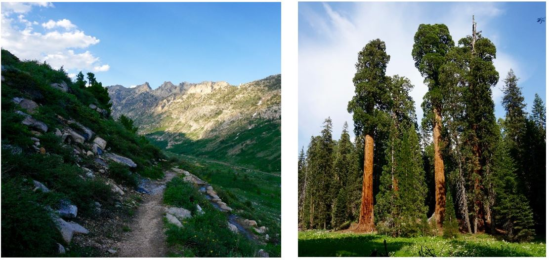Ruby Mountains Wilderness Area, Sequoia National Park