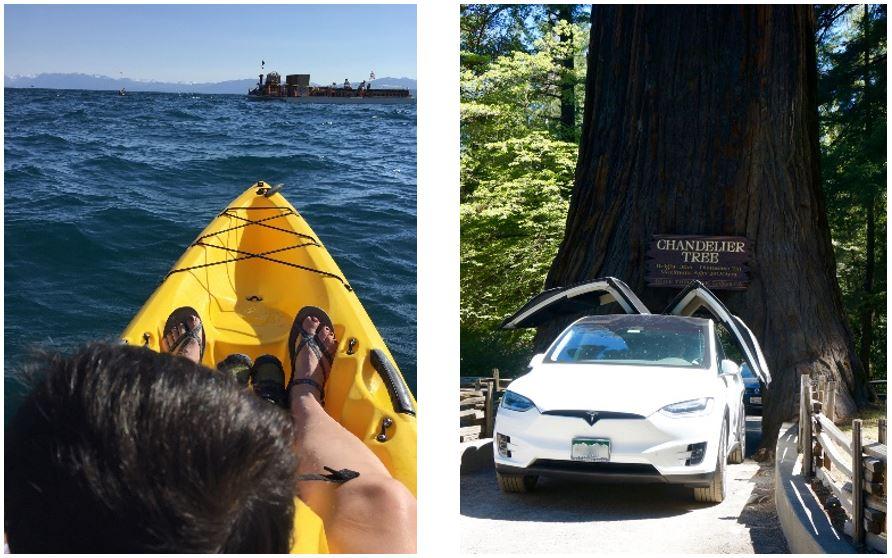 Lake Tahoe, Redwoods