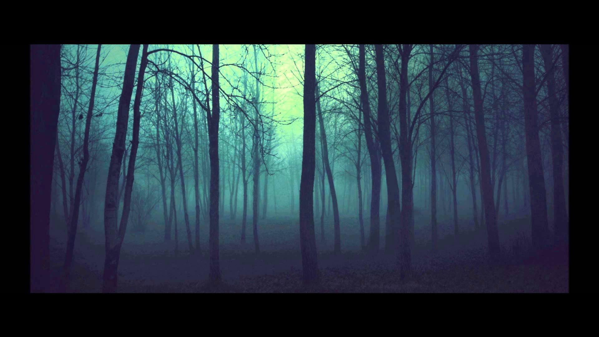 Attractive-Dark-Woods-Wallpapers-HD-Pictures.jpg