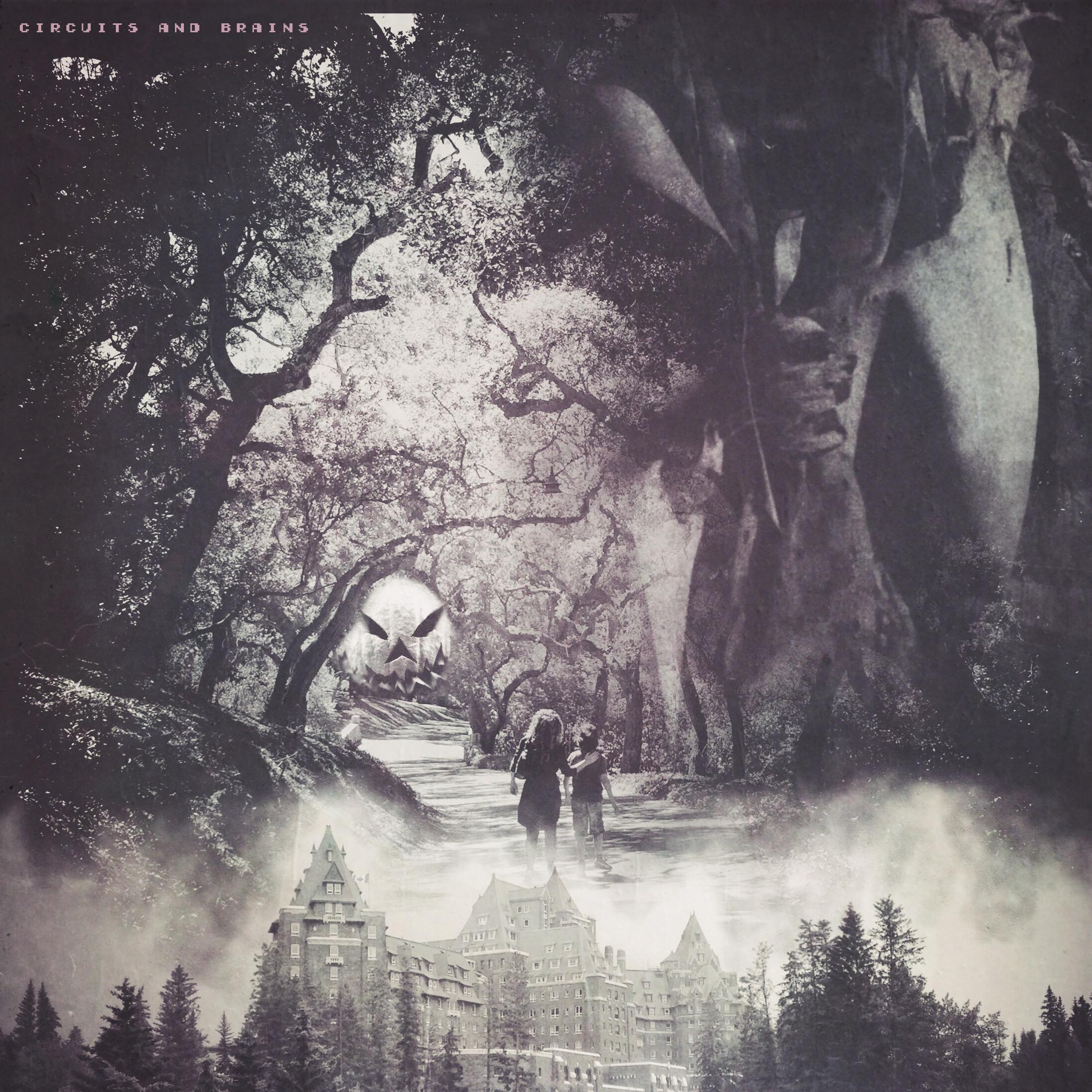 C&B Forest.jpg