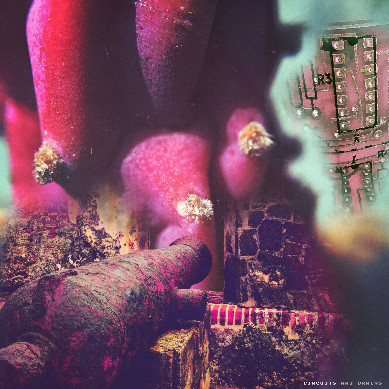 C&B Cactus v4.jpg