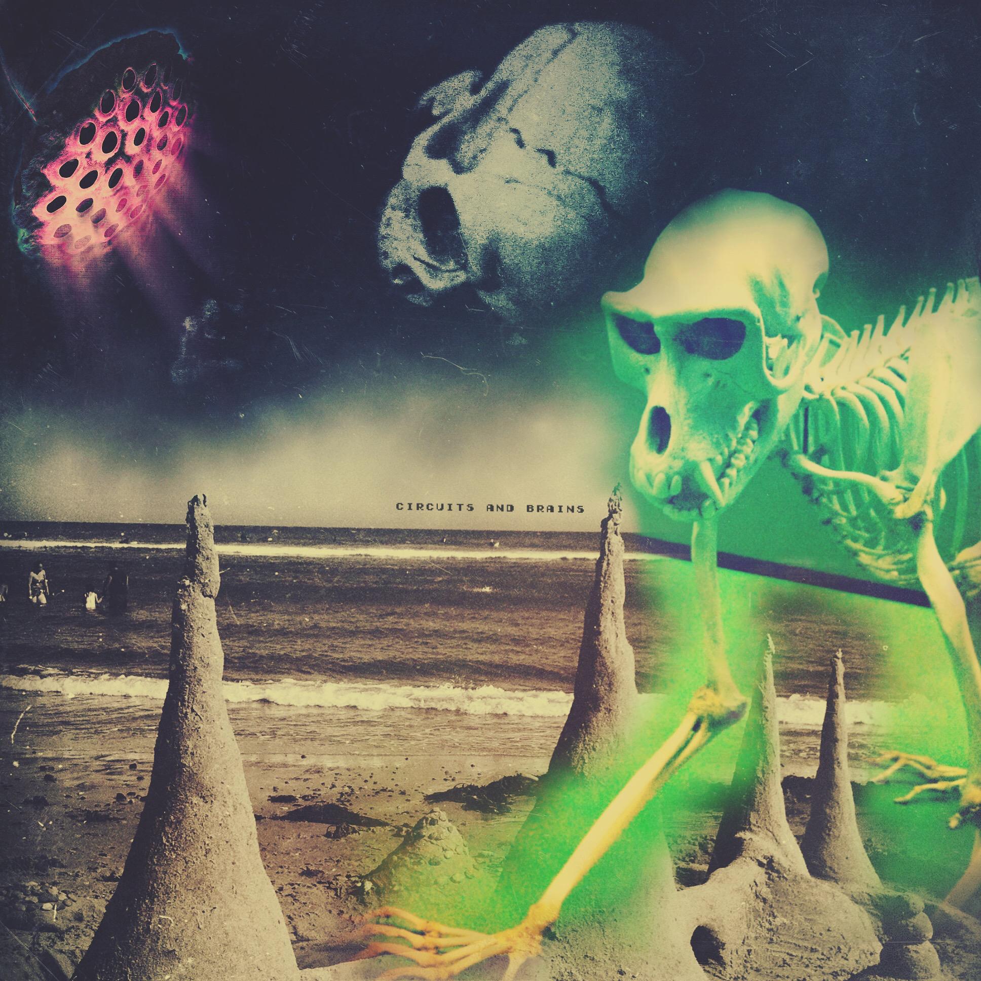C&B Planet Skull.jpg