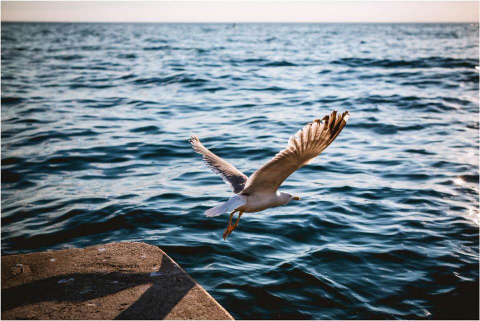 07 nika grega porocna fotografija fotograf zaroka slovenija bled ljubljana portoroz0007.jpg