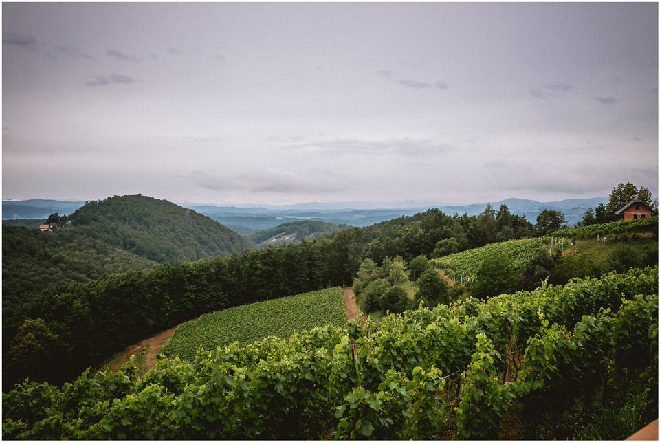 04 slovenia rustic vintage diy wedding vineyard dolenjska novo mesto trebnje opara (2).jpg