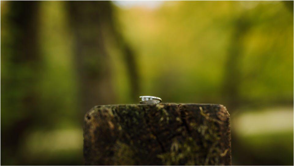 01 poroka otocec grad castle slovenia dolenjska novo mesto zaroka zarocno fotografiranje narava 005.jpg