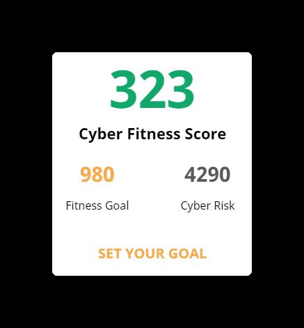 cyber fitness risk score