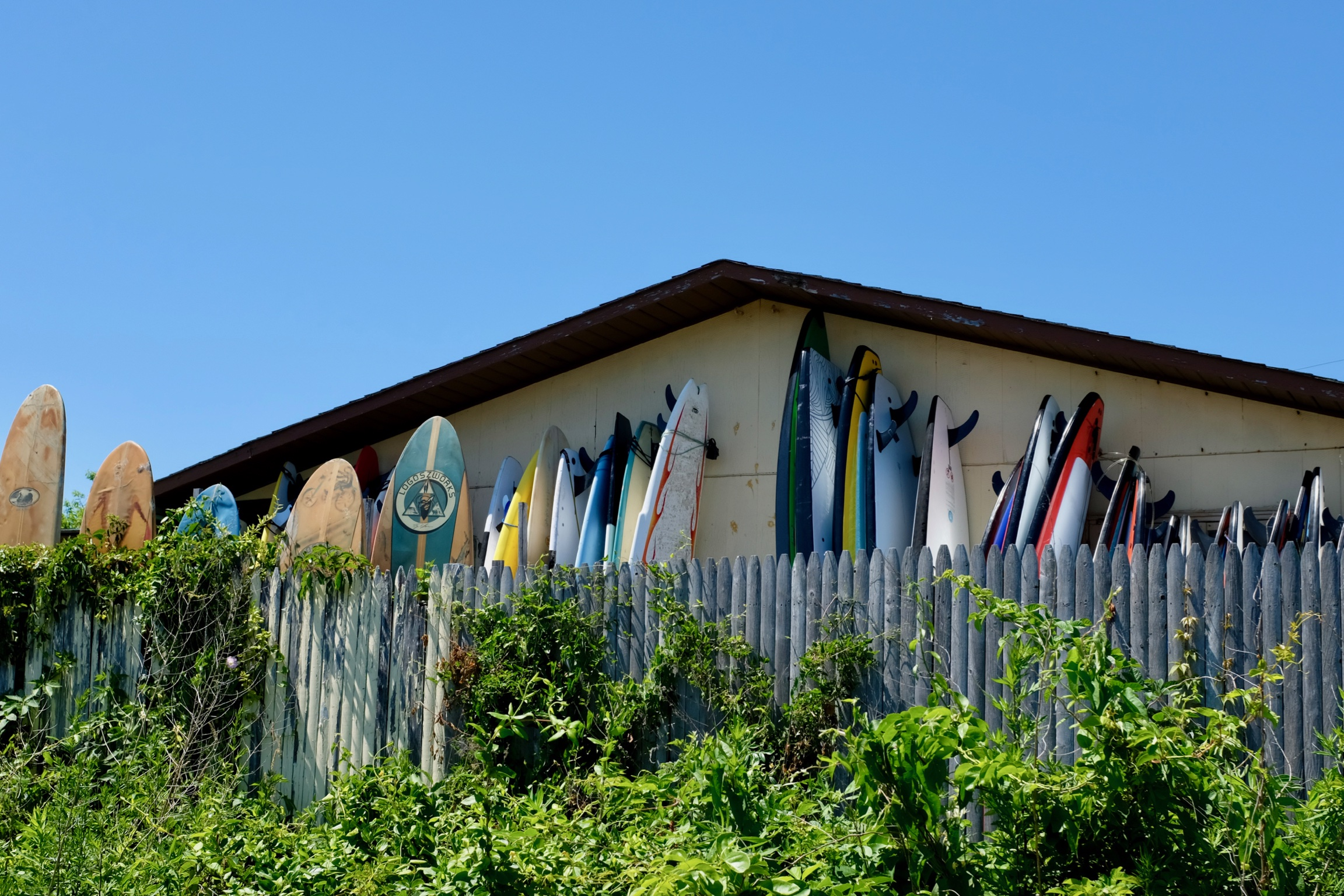 Long Island Montauk Surfers Hamptons BeFifty