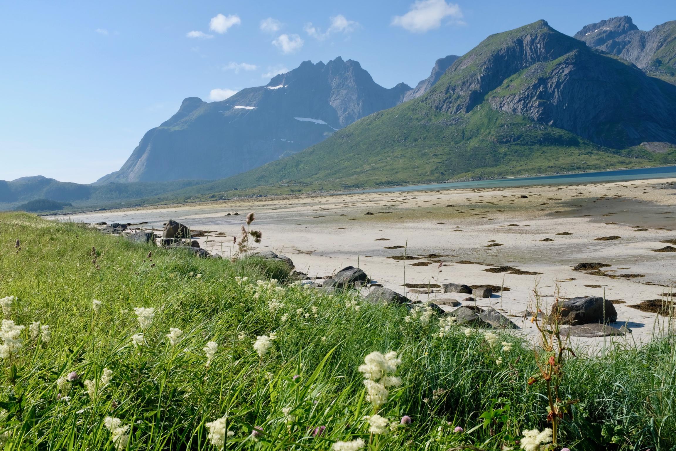 Lofoten Norwegen Reisetipps und konkrete Infos zu der Inselgruppe. Beate Finken Bloggerin bei BeFifty. Die schönsten Plätze in Norwegen / Lofoten