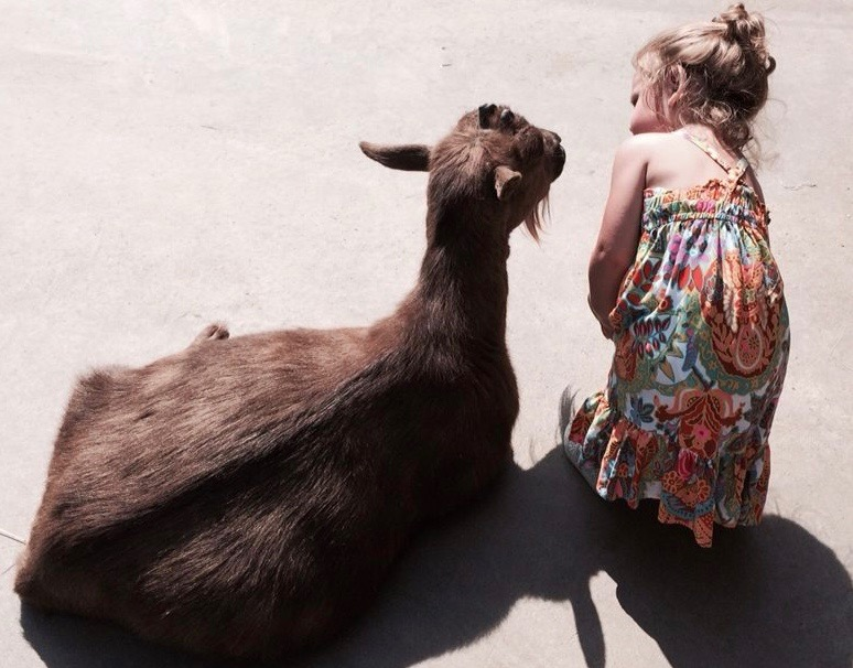 My granddaughter, Lilly, at the Columbus Zoo.