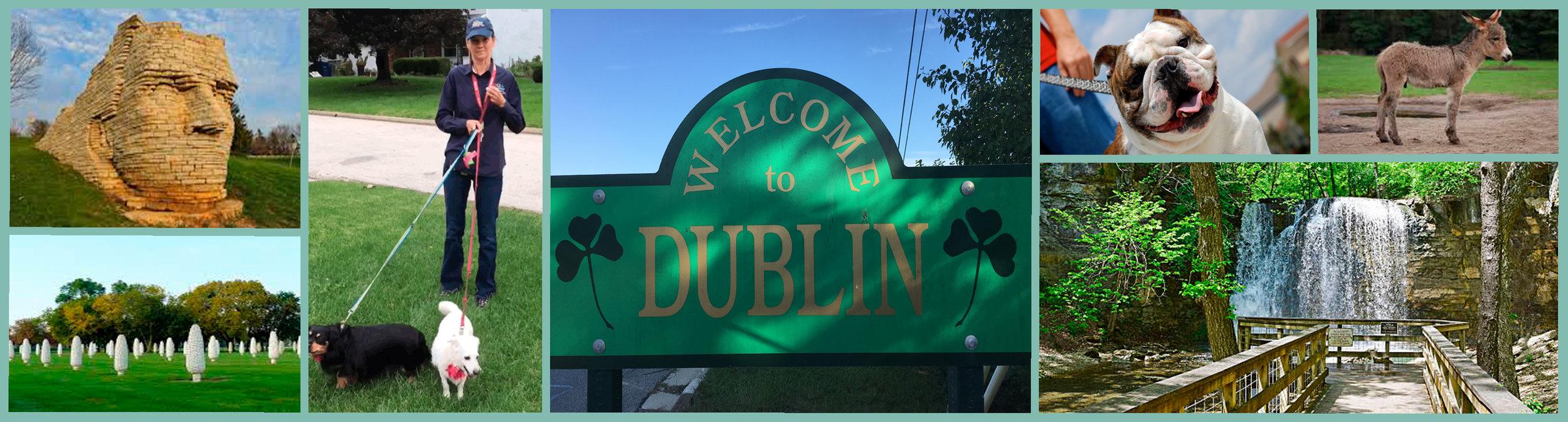 Pet sitting_Dublin_OH.jpg