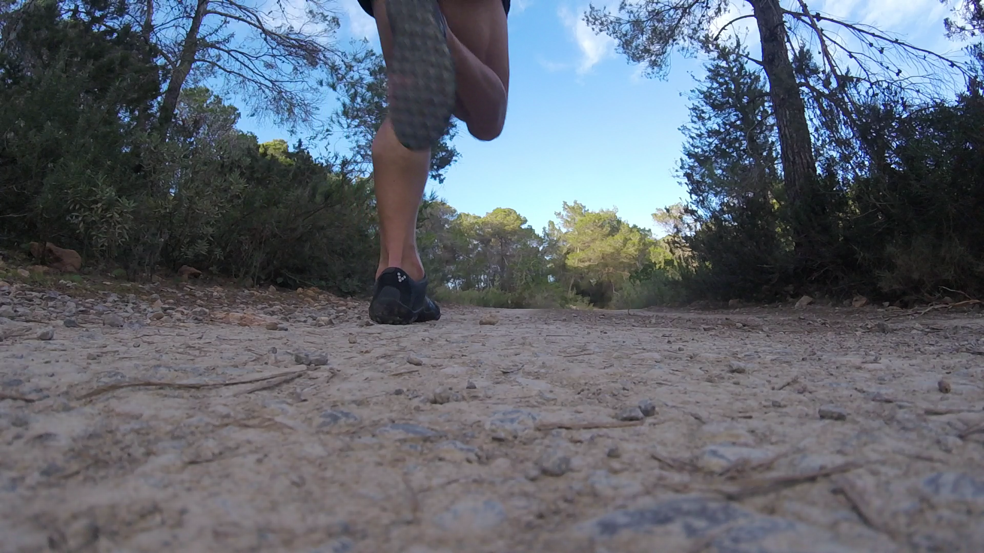 New to Trail Running? - If you're new to trail running, or perhaps curious why you might need a guide, then read on ...