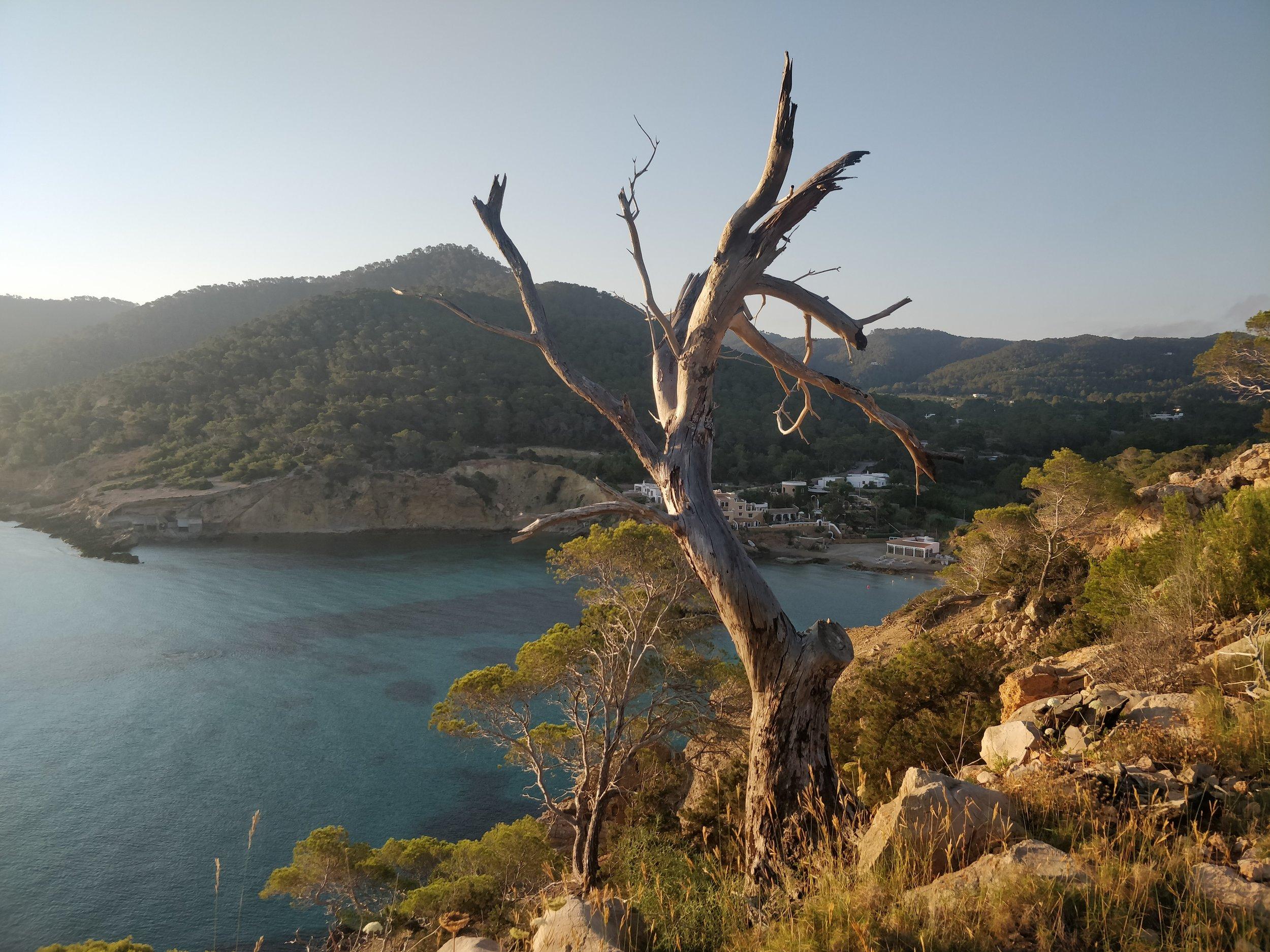 Clifftops above Cala Xarraca