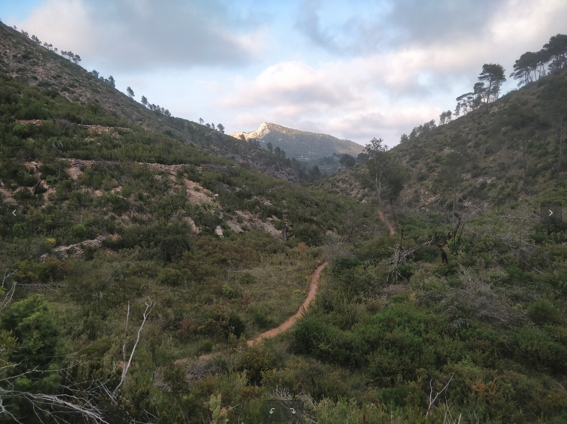 Single Track towards San Vicente.png