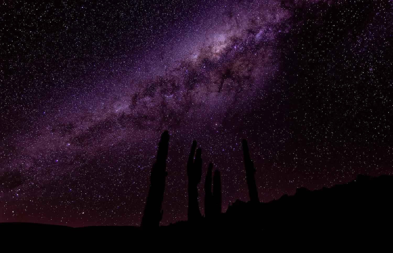 Voie lactée dans le ciel d'Atacama