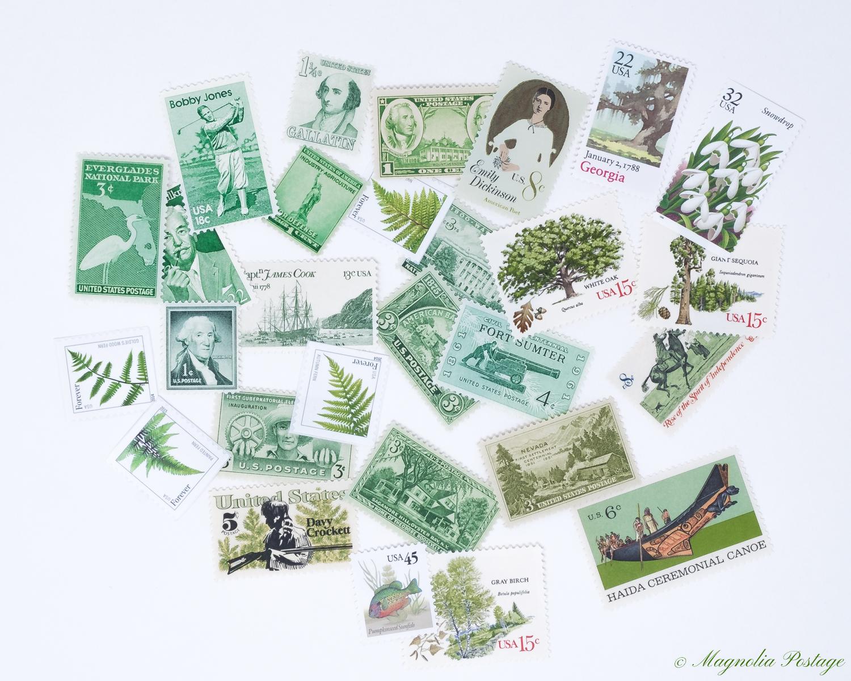 Magnolia-Postage-Green-2.jpg