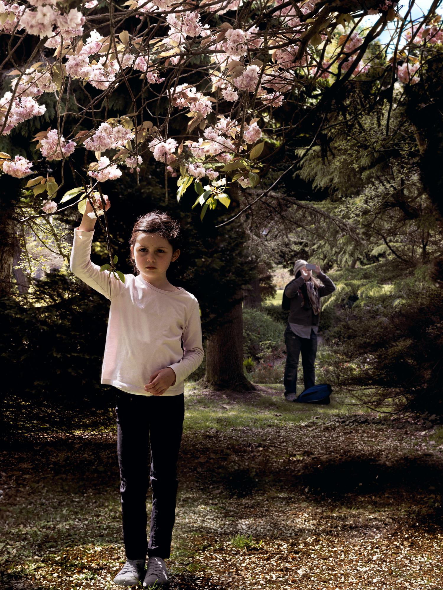 Botanic Garden, Belfast, 2012