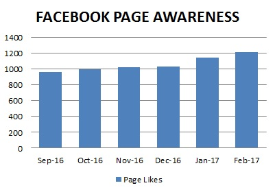 Singapore Facebook Ads Page Likes Growth Metrics