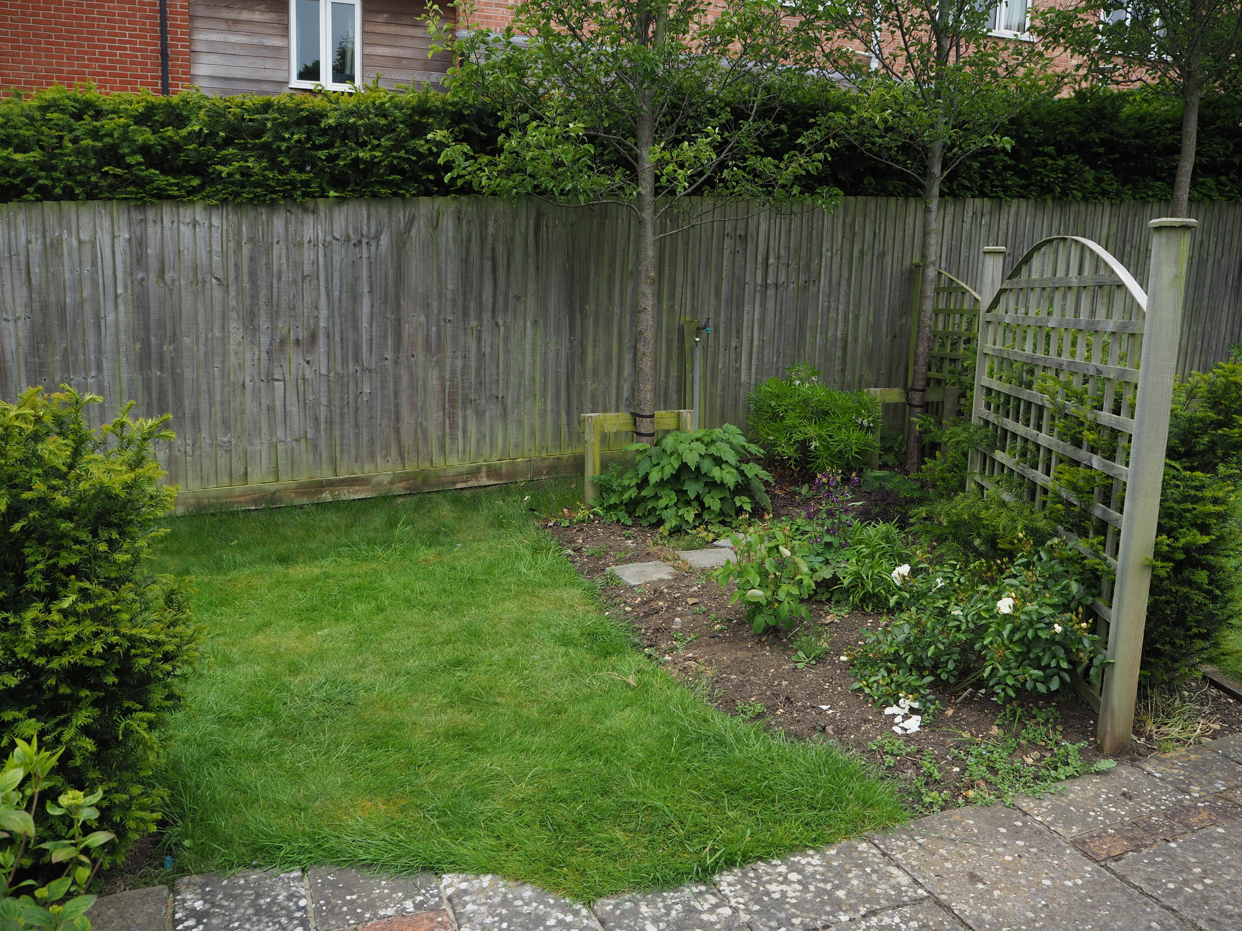 Before… - That spot in the garden where nothing would really do that well