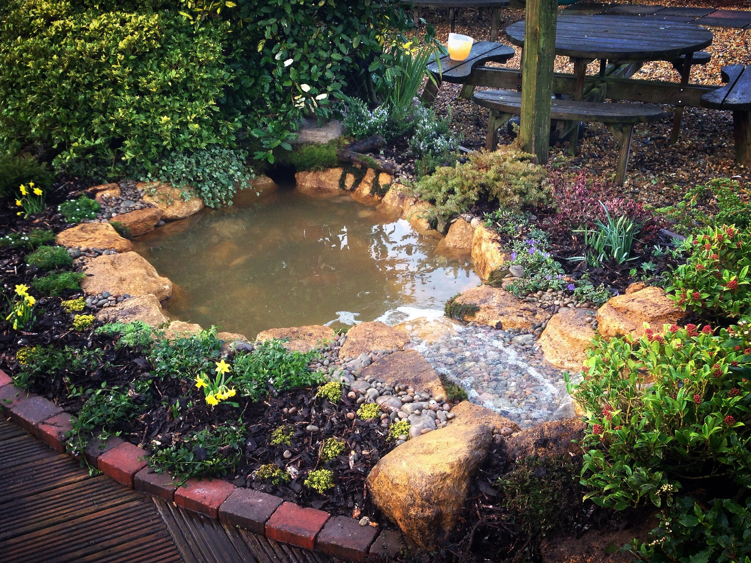 After… - A small ecosystem pond with a babbling brook