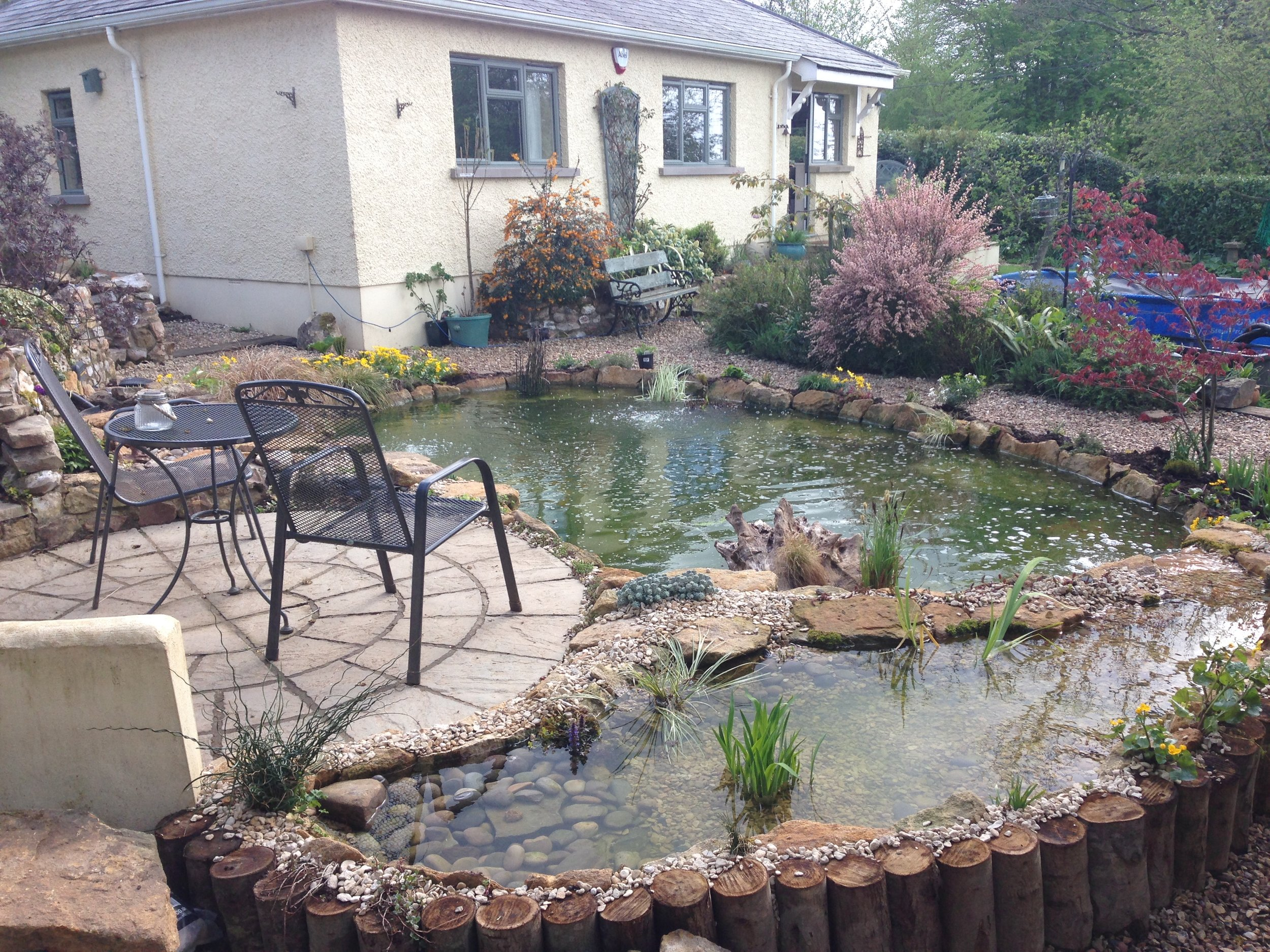 After… - Revamped pond and newly created bog/wetland filter