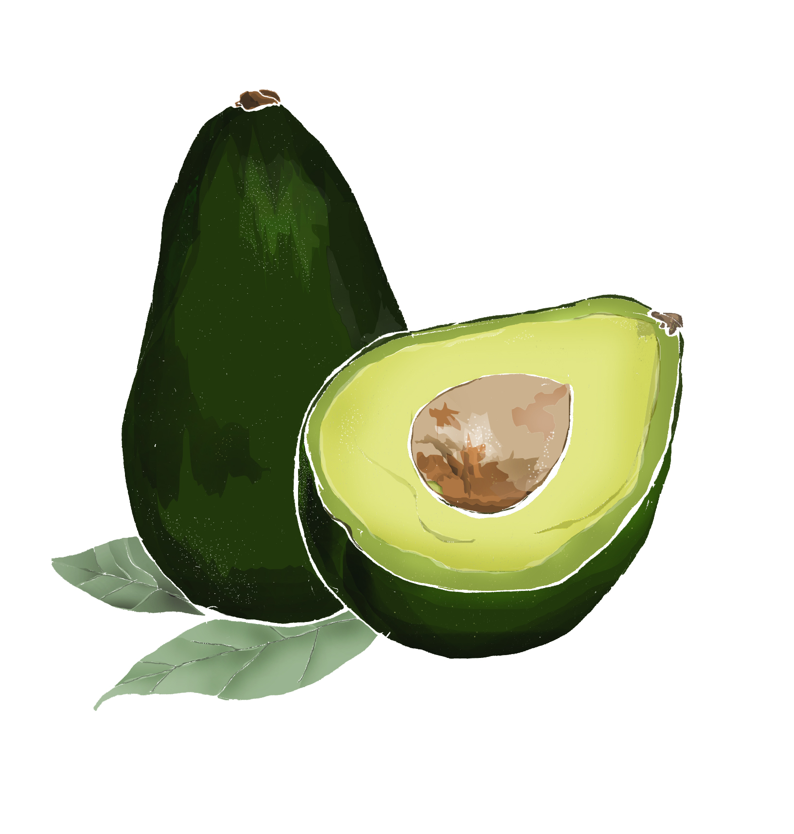 A - Avocado
