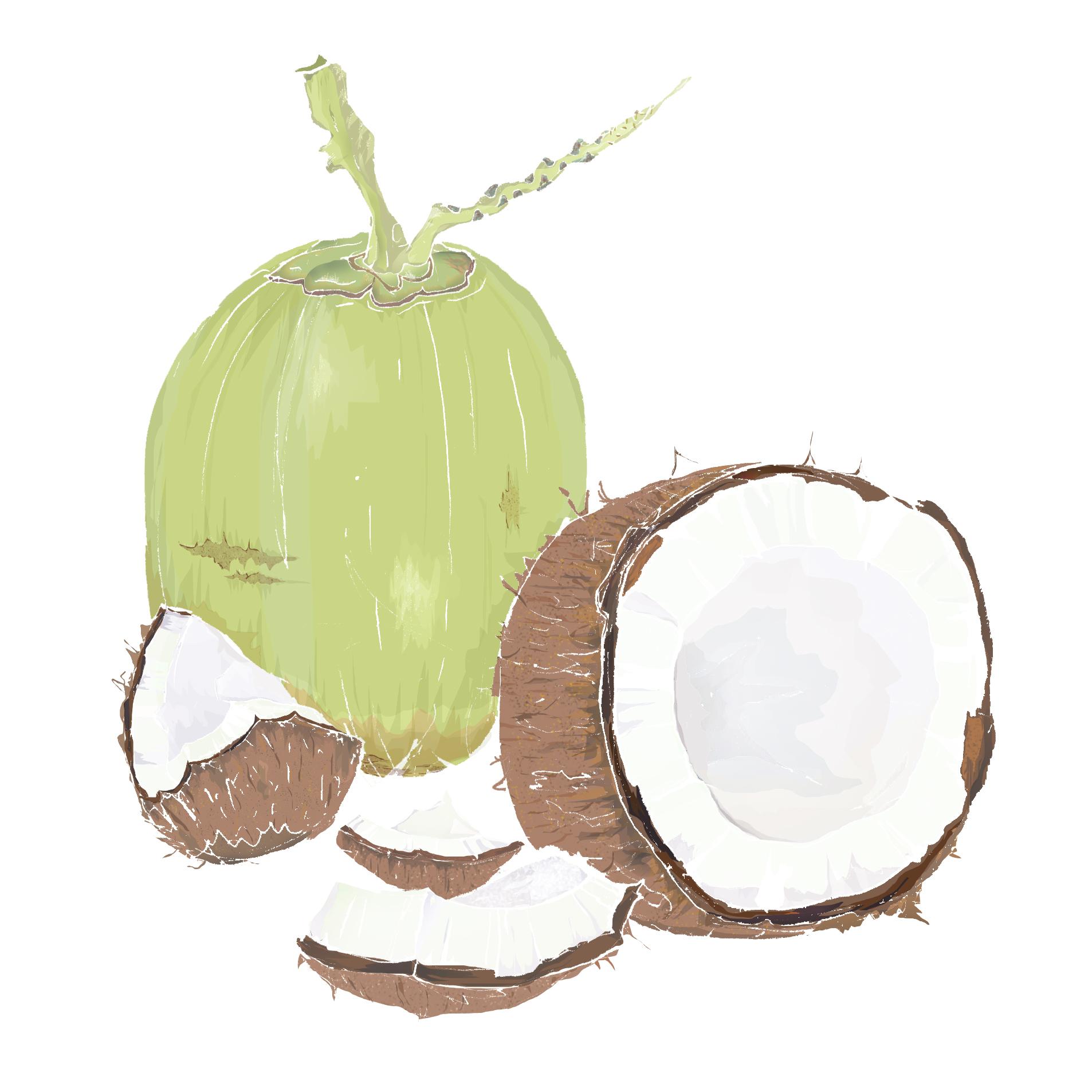 C - Coconut