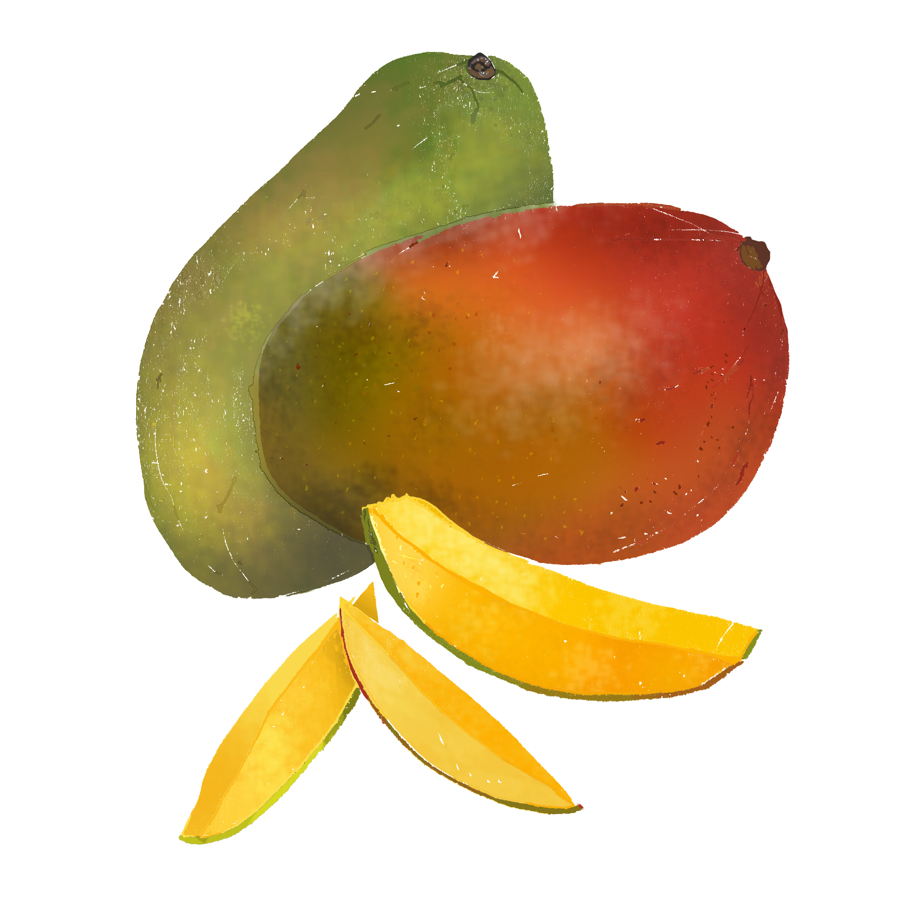 M - Mango
