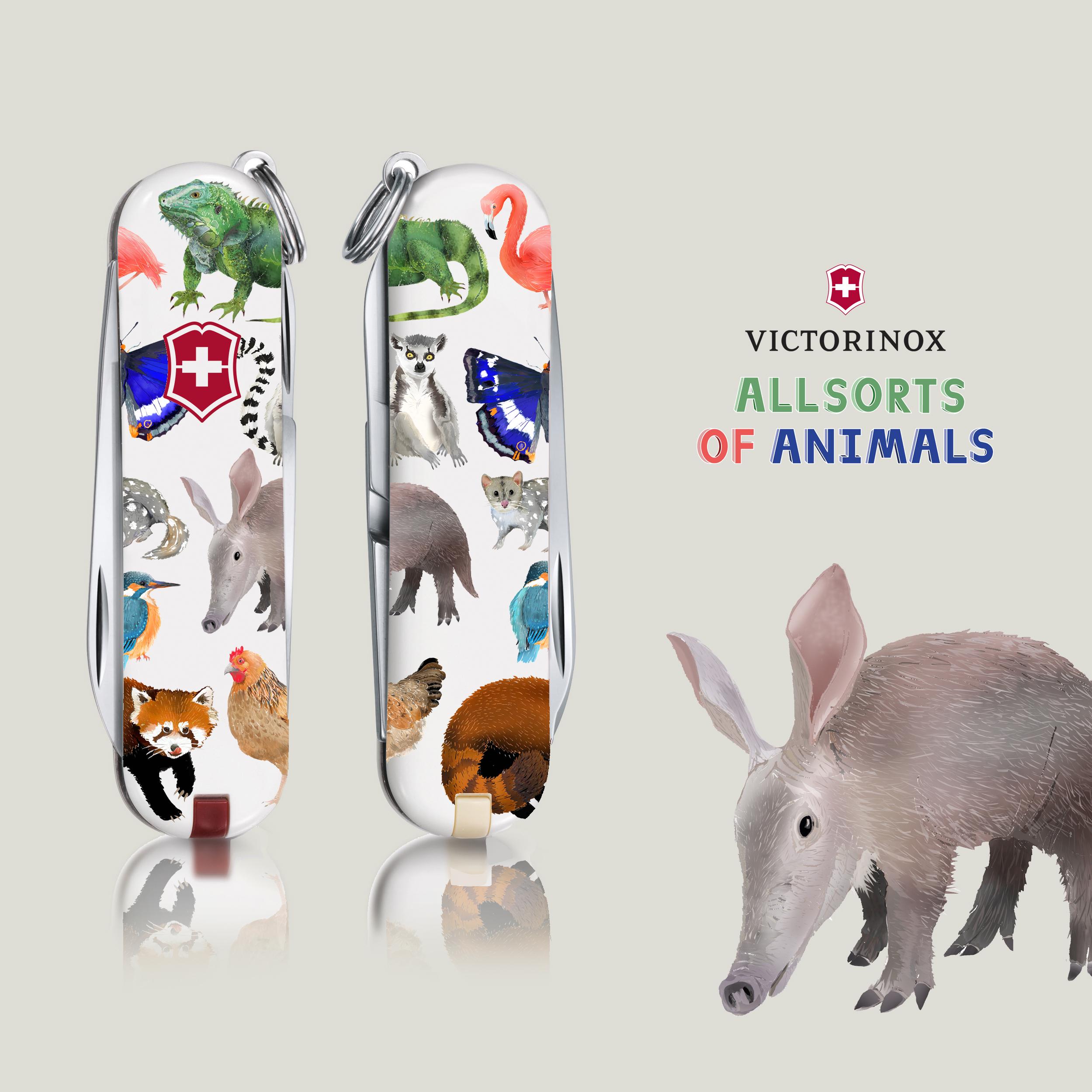 Allsorts Of Animals 1.jpg