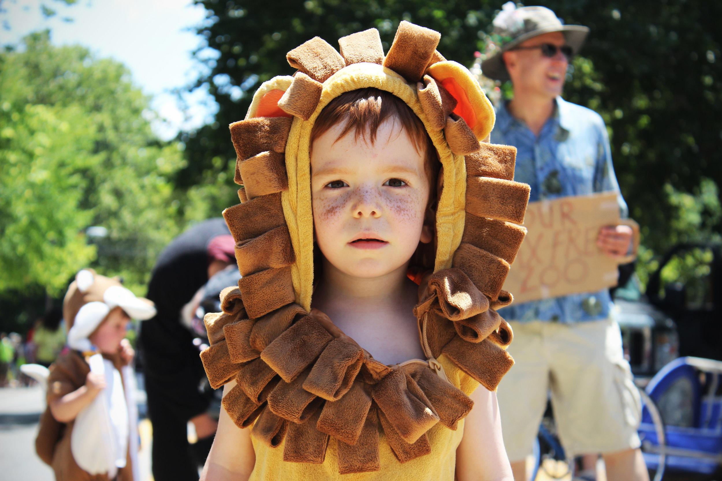 """""""Lion Kid"""" @Columbus Doo Dah Parade"""