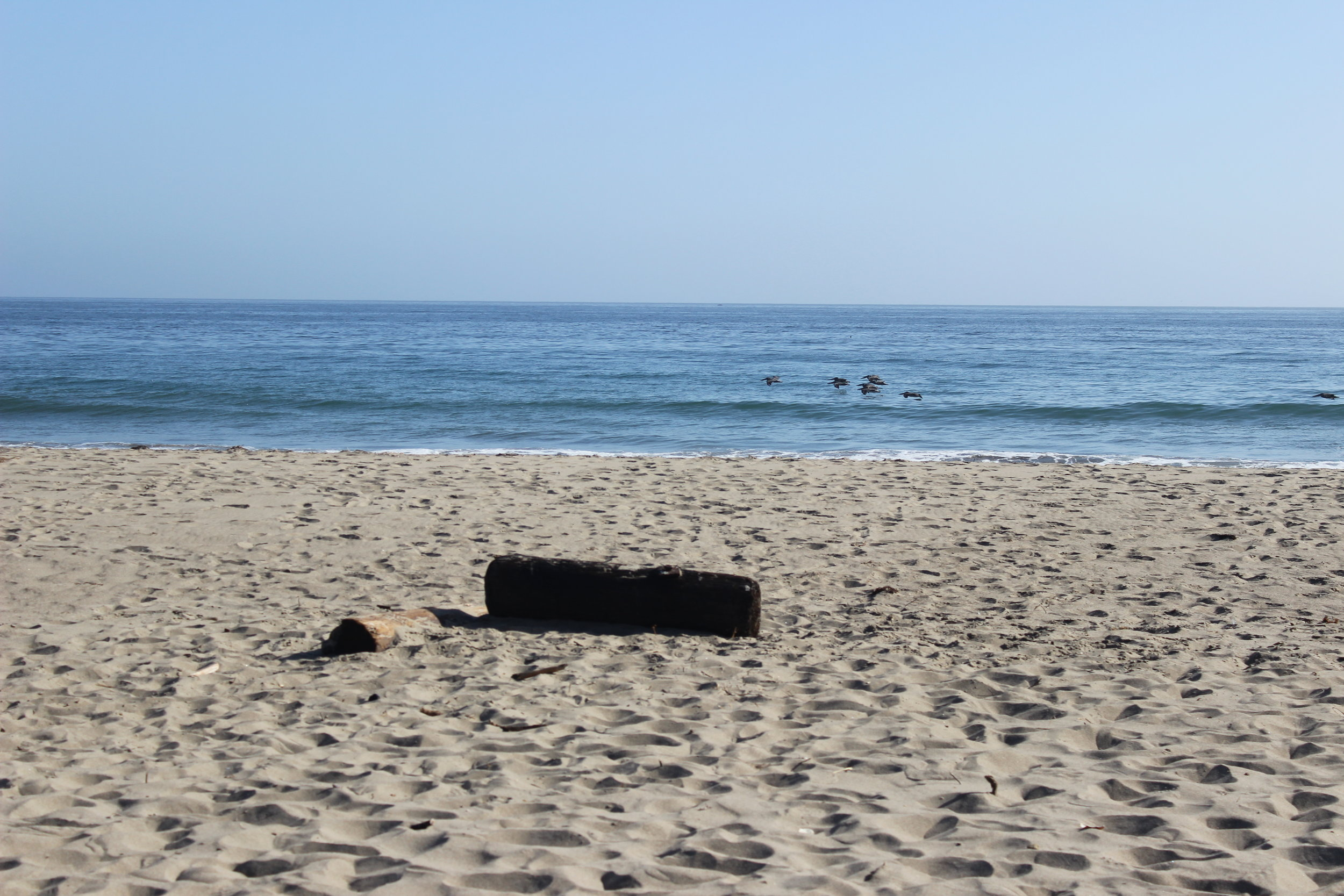 @Point Reyes National Seashore