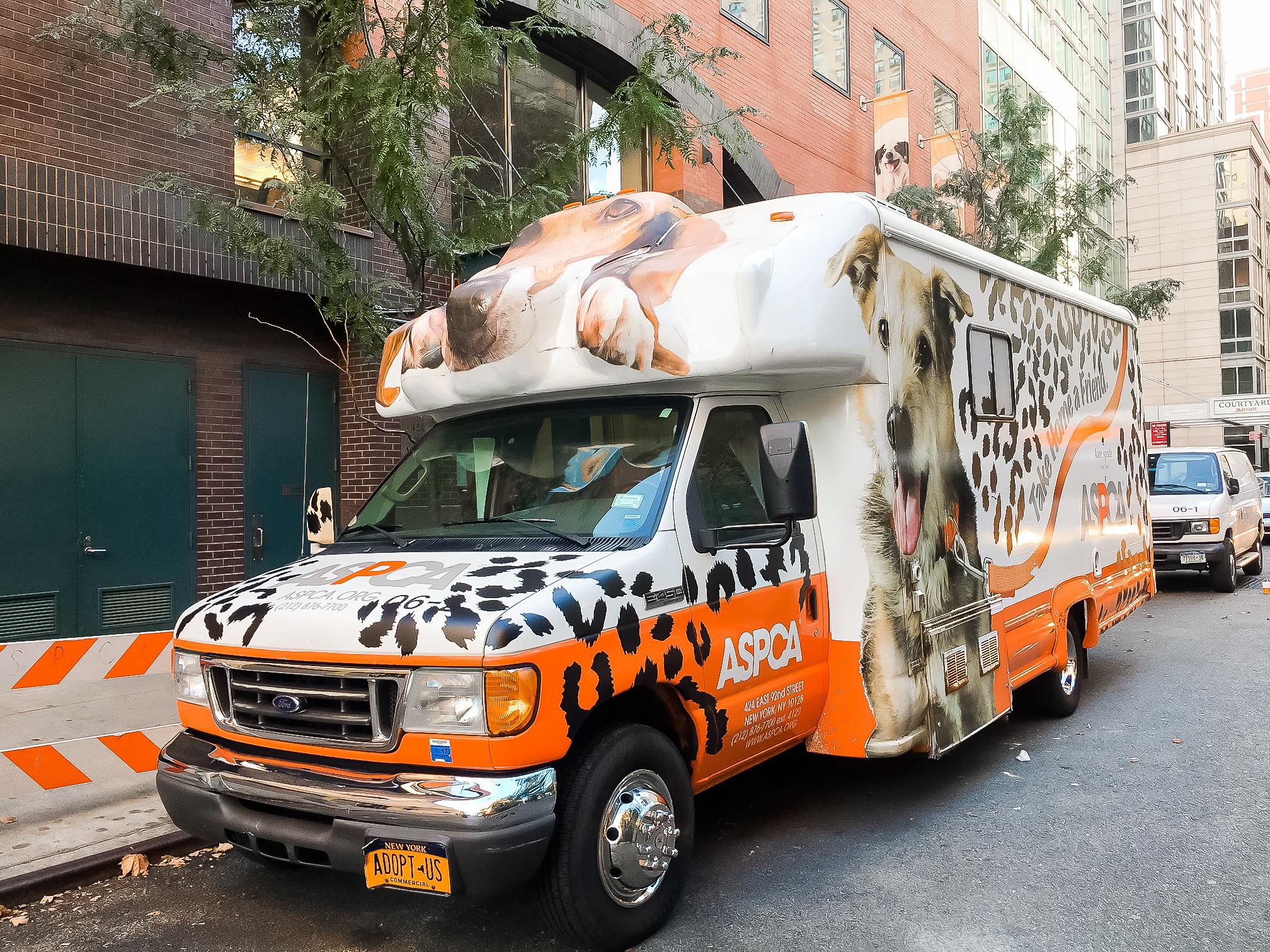 ASPCA x Kate Spade Vehicle