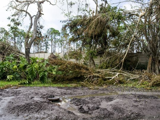 Sewage on Mahogany Bend Drive in Naples on Thursday, September 14, 2017.(Photo: Justin Gilliland/Special to the Naples Daily News)