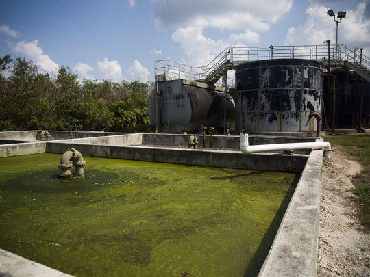 The sewage plant in Everglades City on Thursday, September 21, 2017. (Photo: Katie Klann/Naples Daily News)