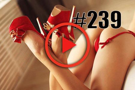Episode 239-requirements.jpg
