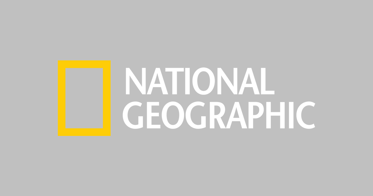 national-geographic-logo-vector-png-kids-games-animals-photos-stories-and-more-national-geographic-kids-1200.jpg