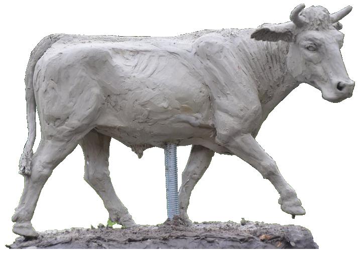 steer1.png