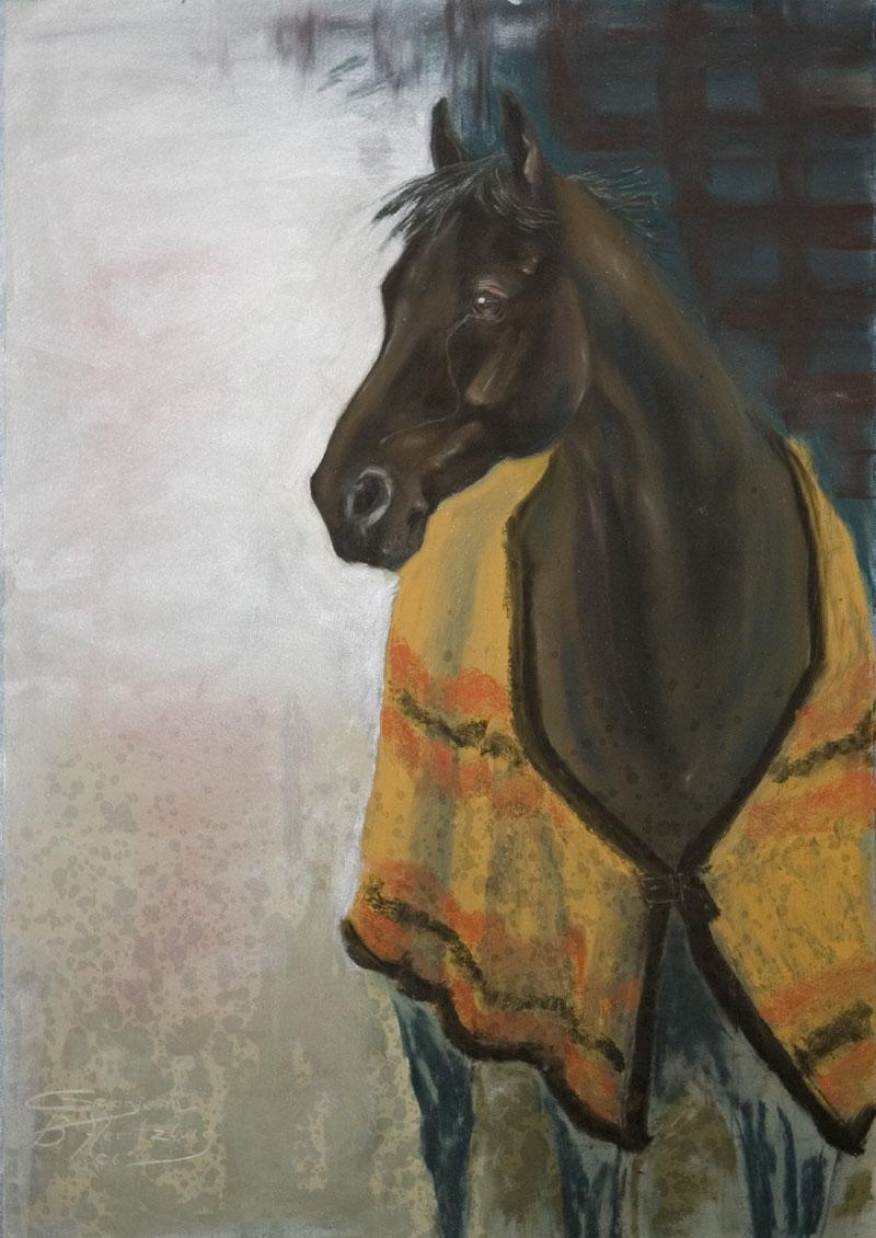 Horsewithblanket.jpg