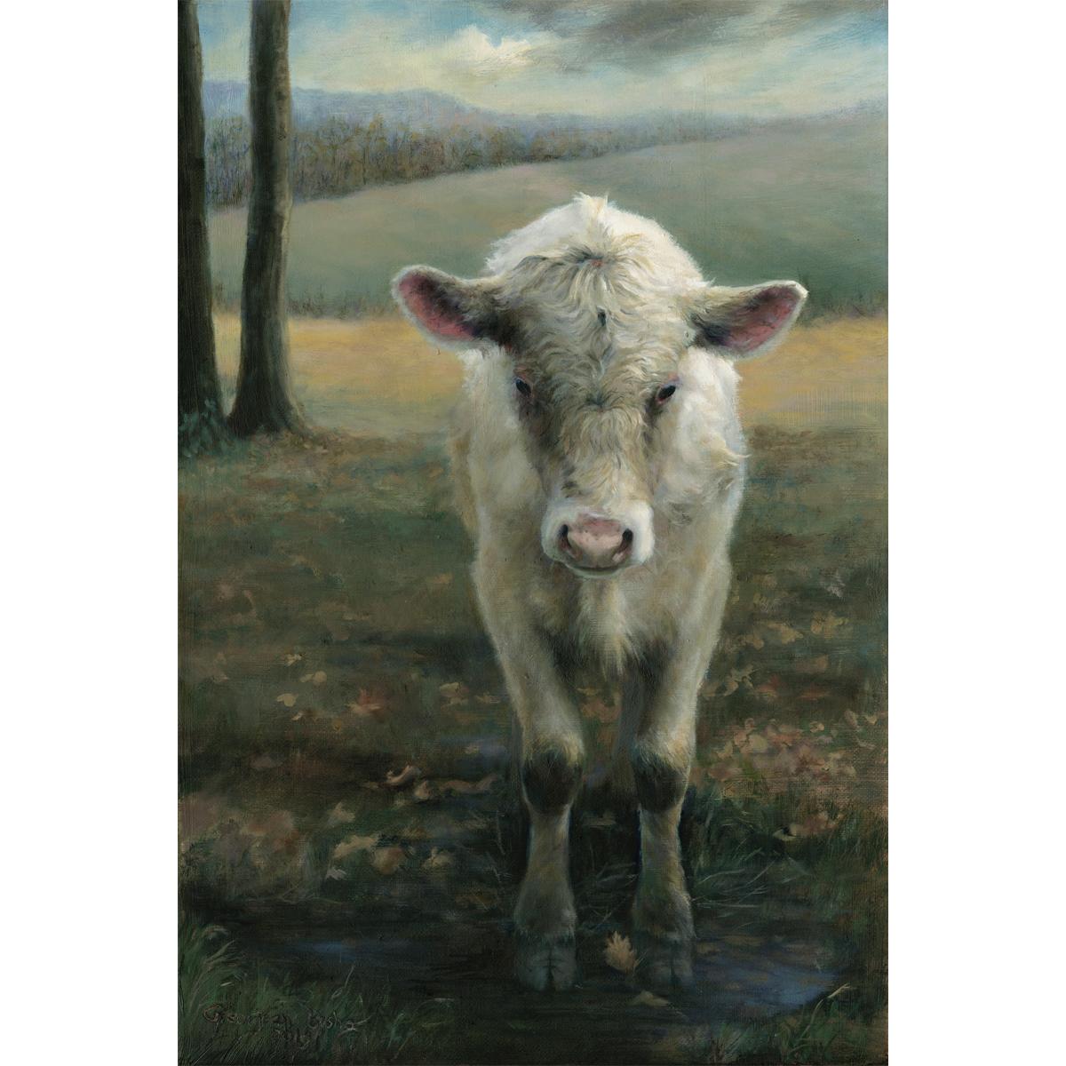 Calf Puddling
