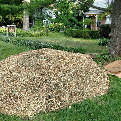 Wood Chip Delivery.jpeg