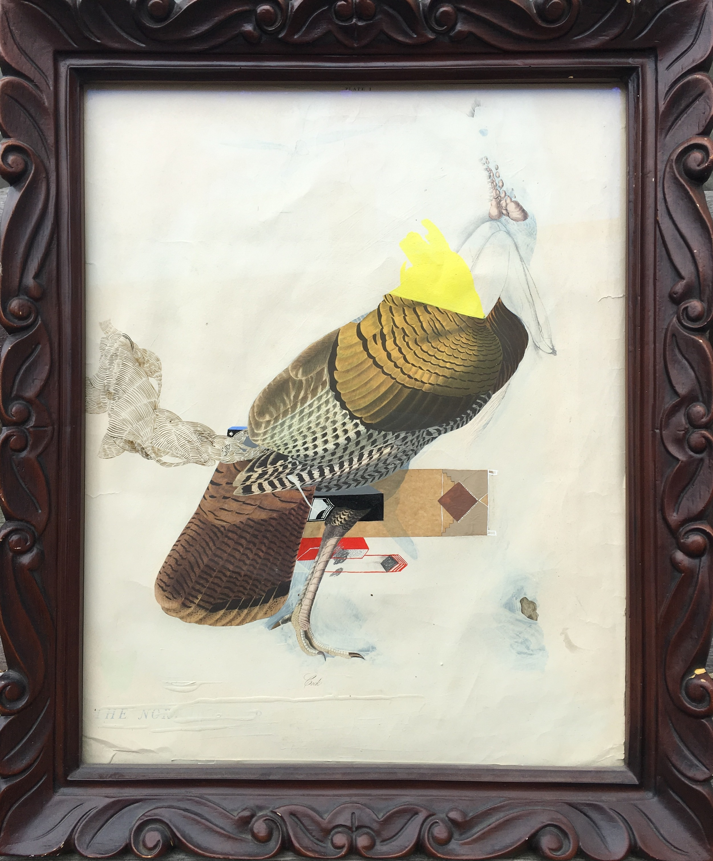 "Monica Canilao, ""Turkey."" 2016. Mixed media on print. 19 x 23 in."