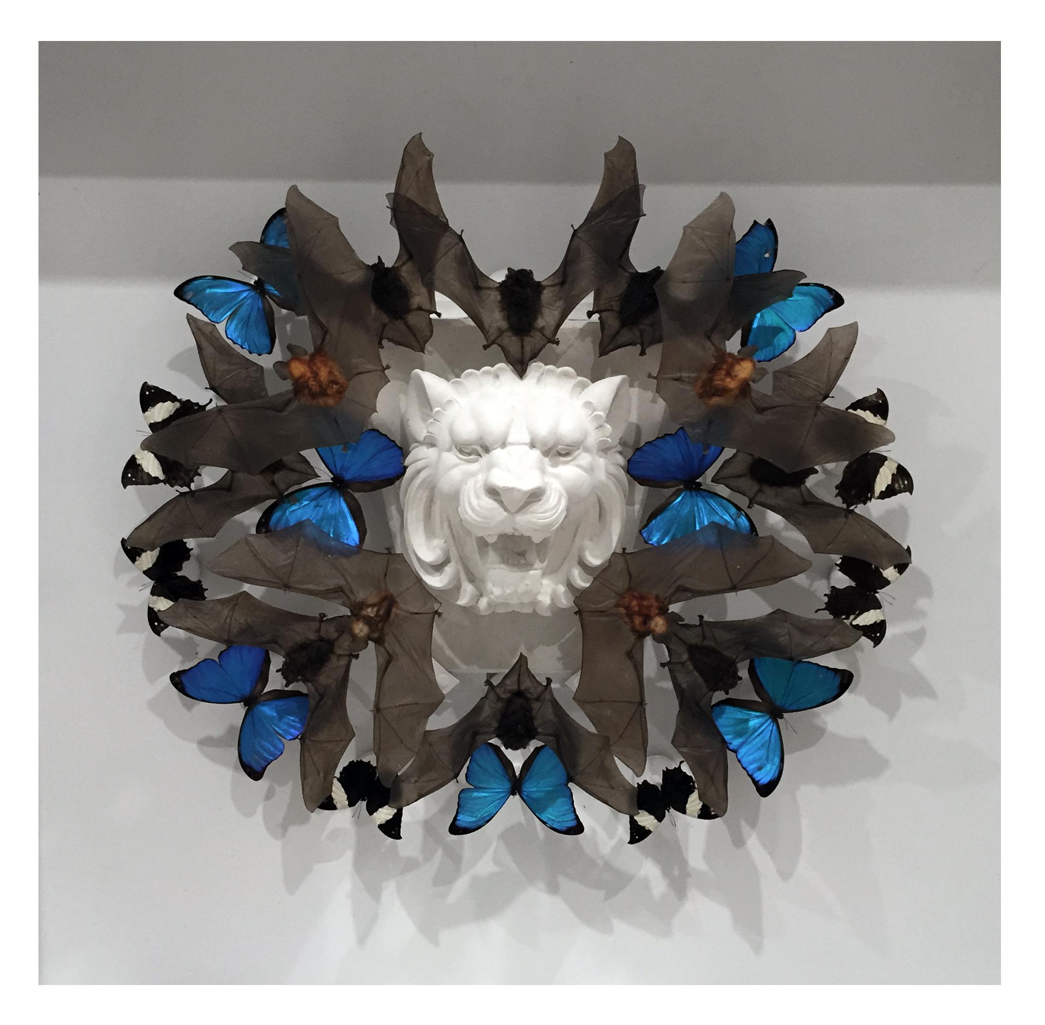 "Joseph Grazi, ""Mufasa"" 2016.Taxidermy bats, dried butterflies, and stone sculpture on wood mounted in plexiglass. 34"" x 34"" x 8""."