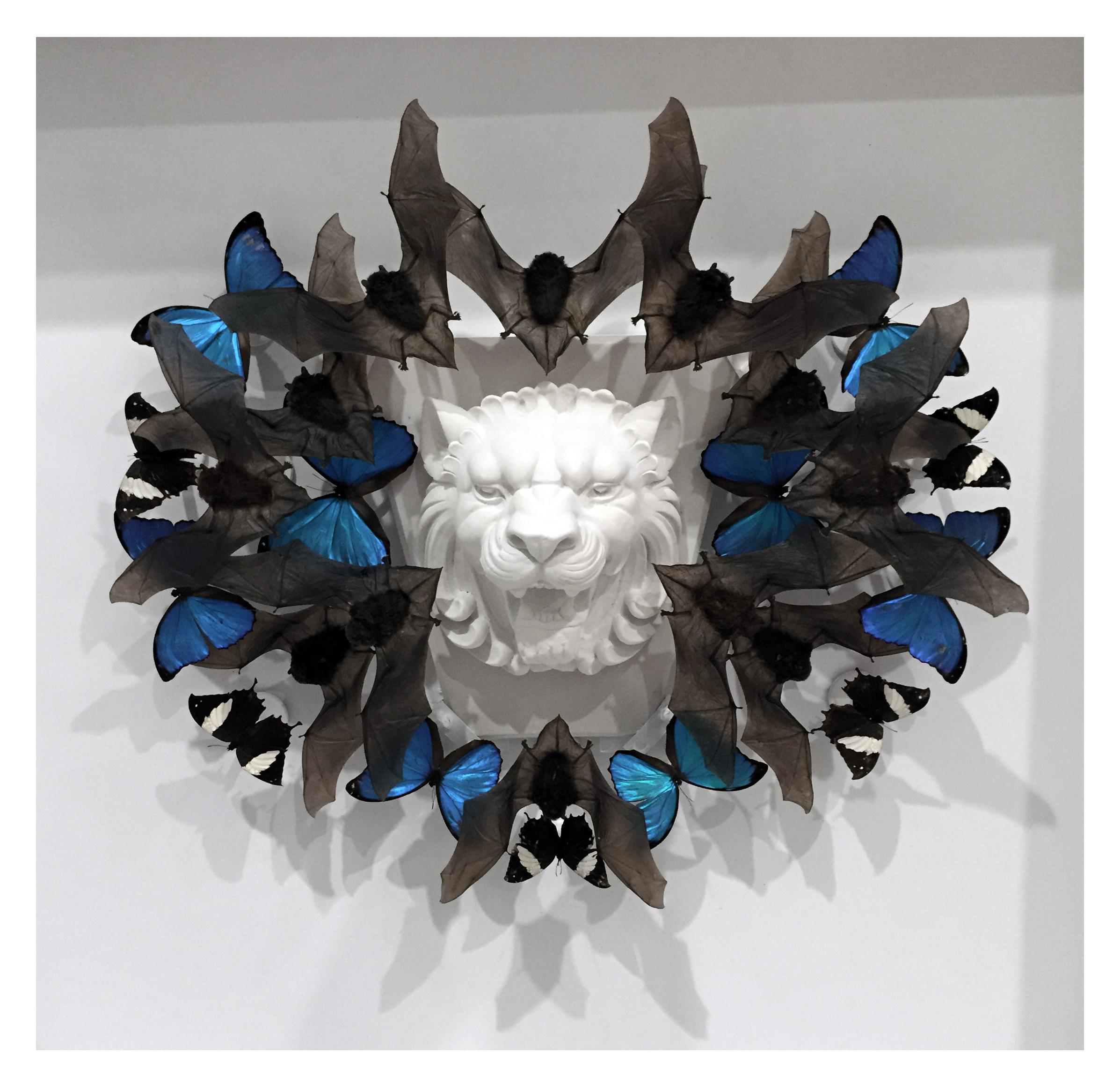 "Joseph Grazi, ""Scar"" 2016. Taxidermy bats, dried butterflies, and stone sculpture on wood mounted in plexiglass. 34"" x 34"" x 8""."