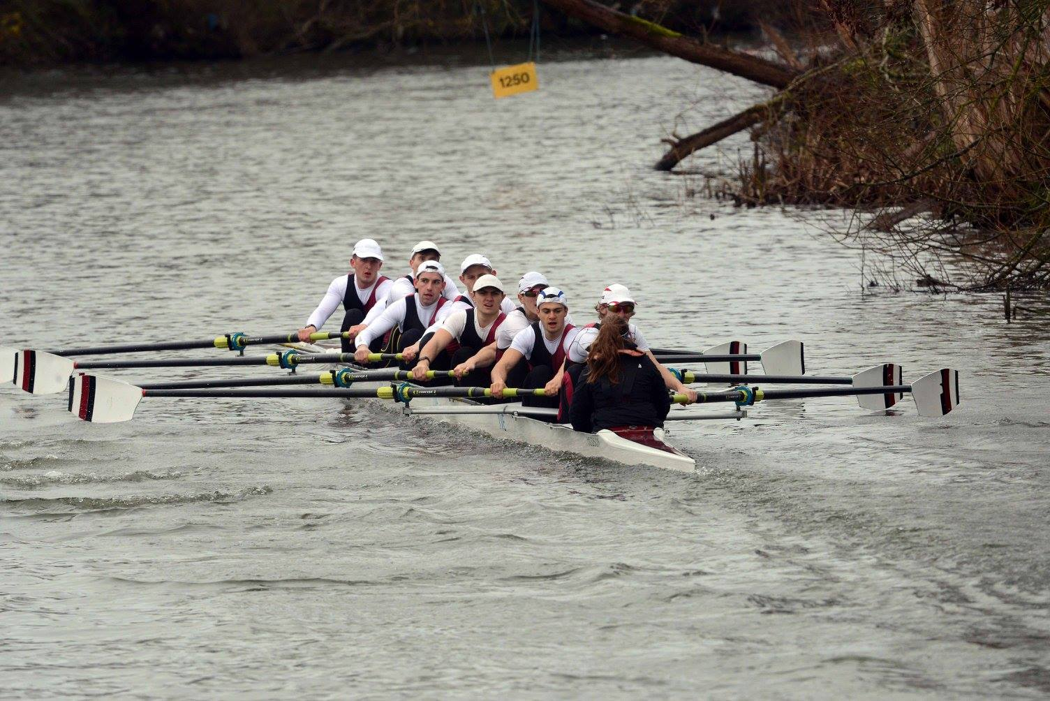 UBBC Men's 2nd 8, winners of Men's Intermediate Eights