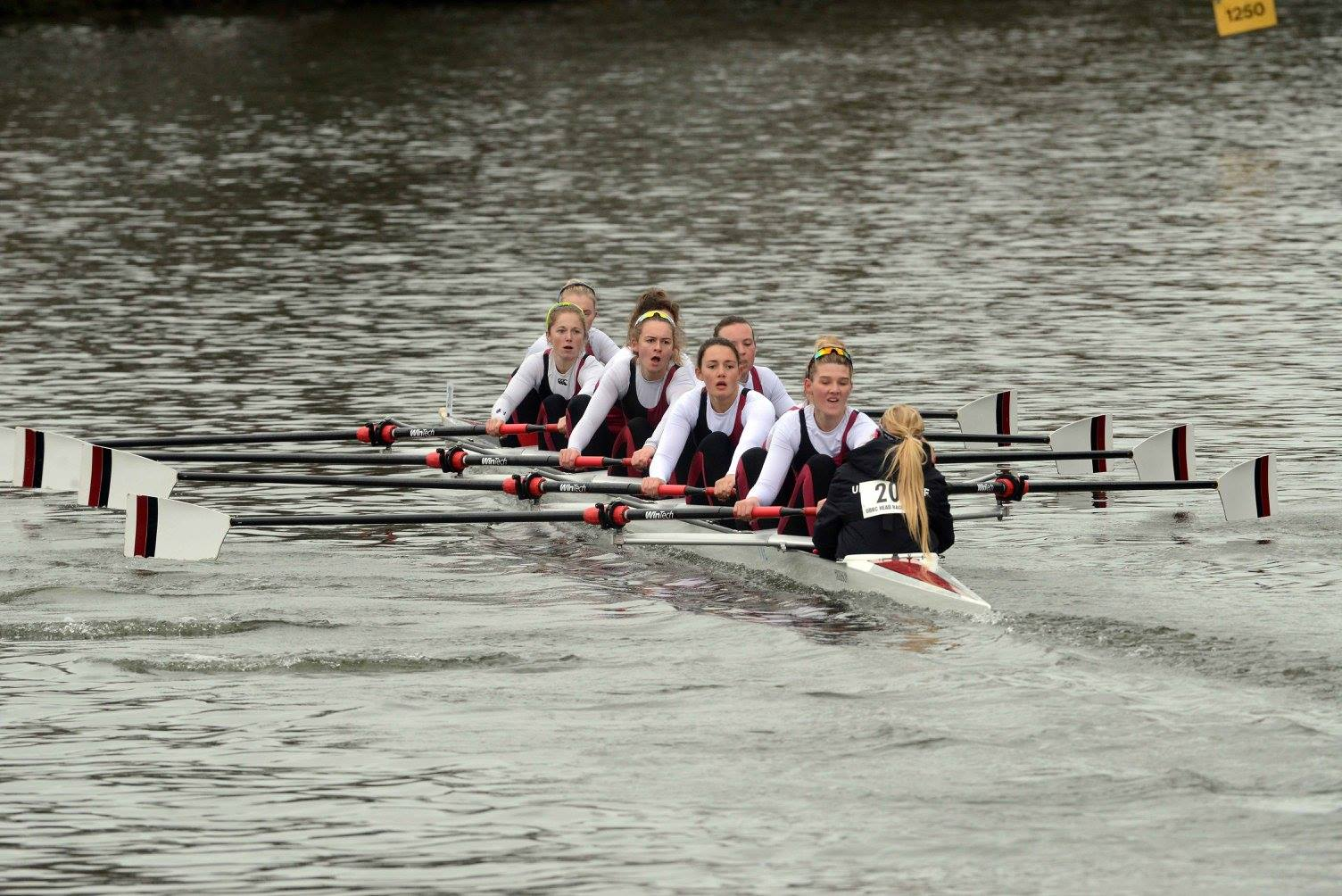 UBBC Women's 1st 8, winners of Women's Championship Eights