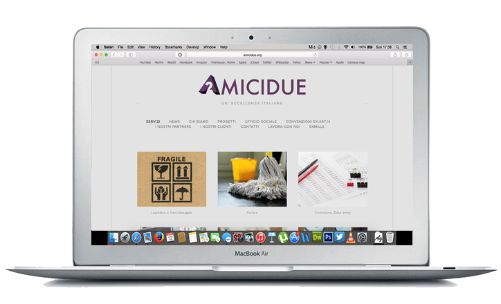 This is preview of our website design work for Amici Due