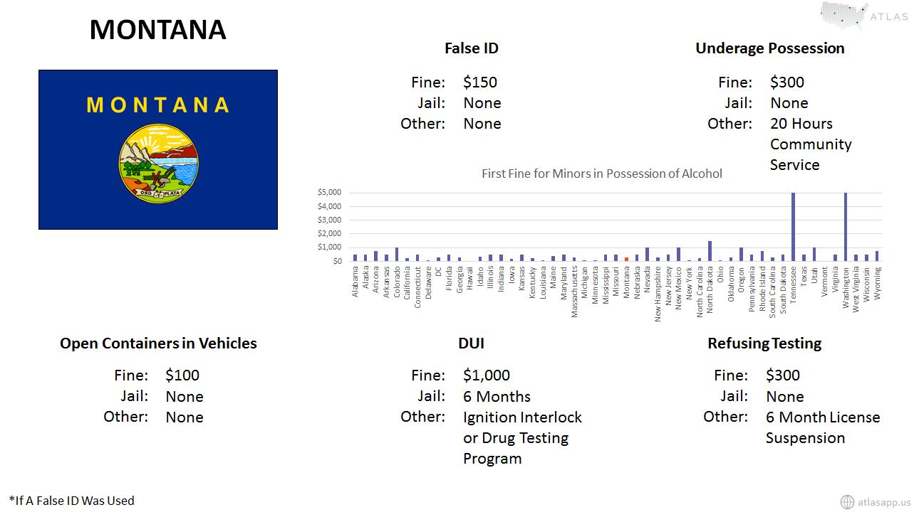 Montana Alcohol Fact Sheet.png