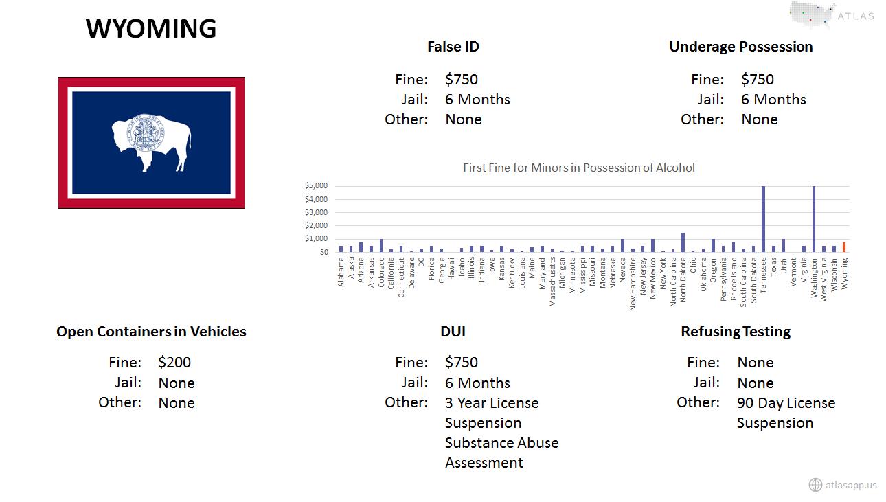 Wyoming Alcohol Fact Sheet.png