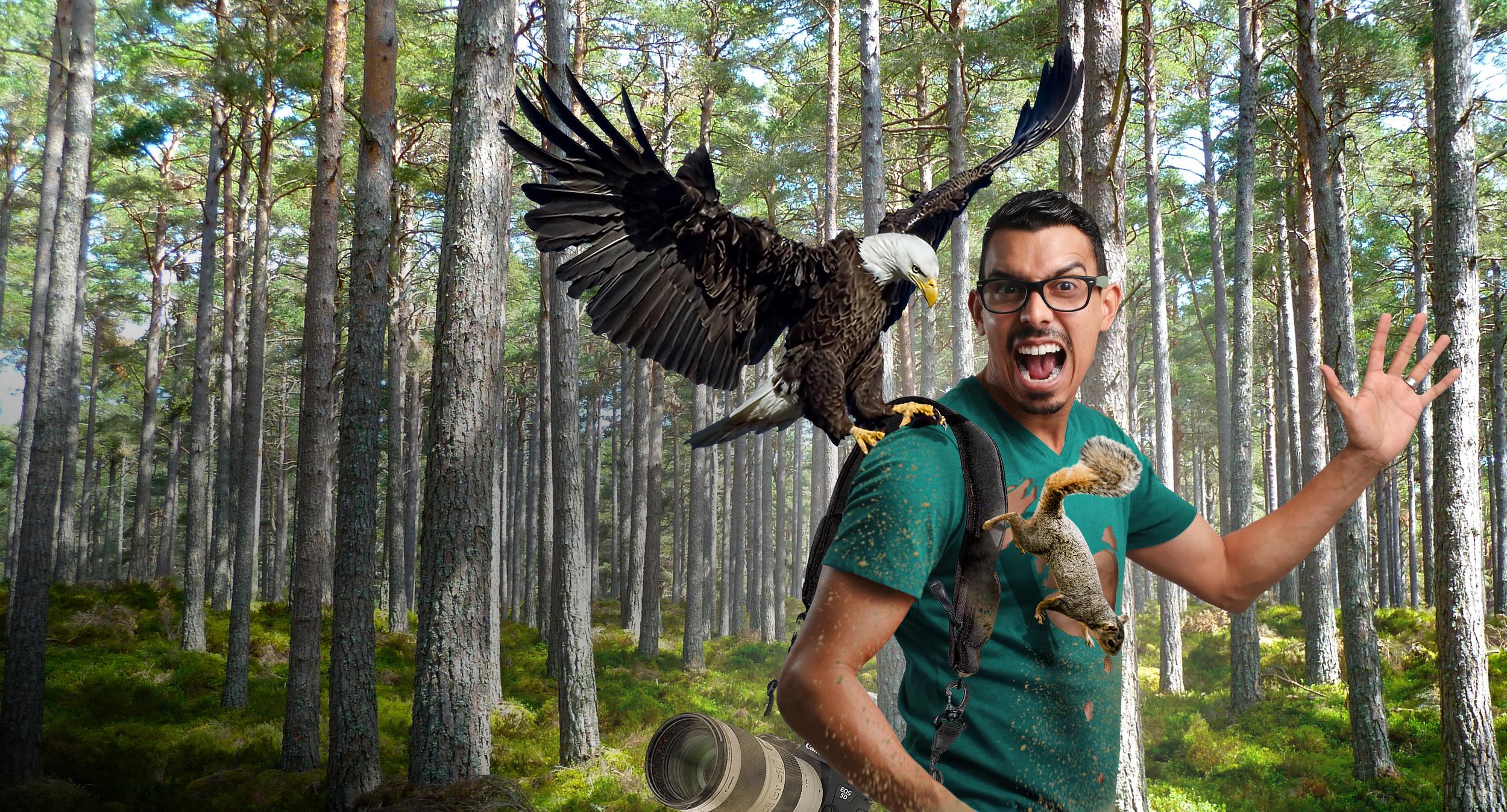 Eagle Attack Clean.jpg