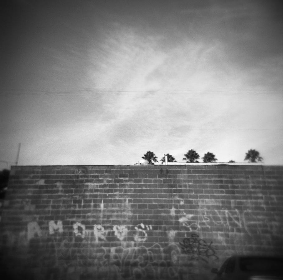 Amoros, 2010